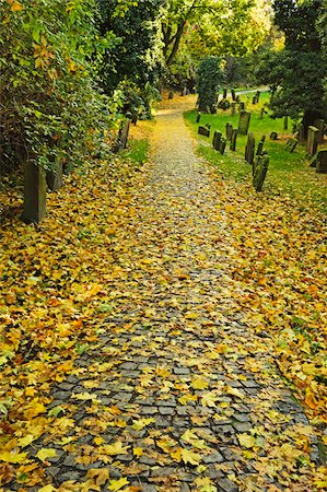 Leaf Covered Path in Autumn, Jewish Cemetery, Worms, Rhineland-Palatinate, Germany Stock Photo - Rights-Managed, Code: 700-07202703