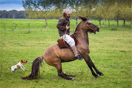 people in argentina - Man Horseback Riding at Candelaria del Monte, San Miguel de Monte, Argentina Stock Photo - Rights-Managed, Code: 700-07237781