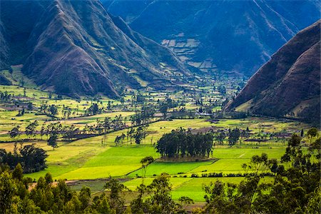 Farmland, Zuleta, Imbabura Province, Ecuador Stock Photo - Rights-Managed, Code: 700-07279309