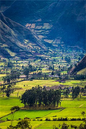 Farmland, Zuleta, Imbabura Province, Ecuador Stock Photo - Rights-Managed, Code: 700-07279311