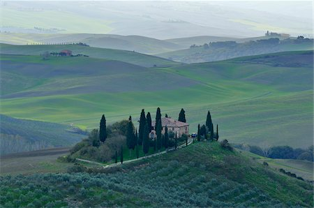 Countryside with Farmhouse, San Quirico d'Orcia, Val d'Orcia, Province of Siena, Tuscany, Italy Stock Photo - Rights-Managed, Code: 700-07674836