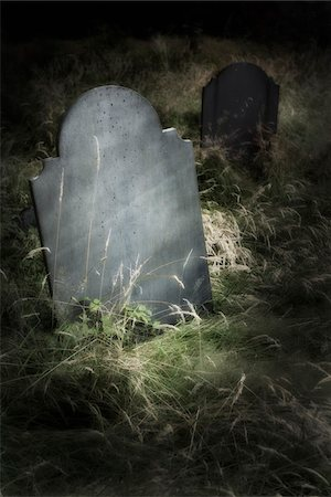 Close-up of blank grave stone in an overgrown cemetery. Stock Photo - Rights-Managed, Code: 700-07672292