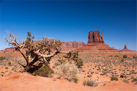 Scenic landscape with Mitten Butte in the background, Monument Valley, Arizona, USA Stock Photo - Rights-Managed, Code: 700-07802624