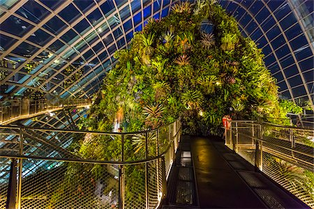 Walkway at Cloud Forest conservatory, Gardens by the Bay, Singapore Stock Photo - Rights-Managed, Code: 700-07802669