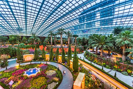 Overview of the Flower Dome, Gardens by the Bay, Singapore Stock Photo - Rights-Managed, Code: 700-07802660