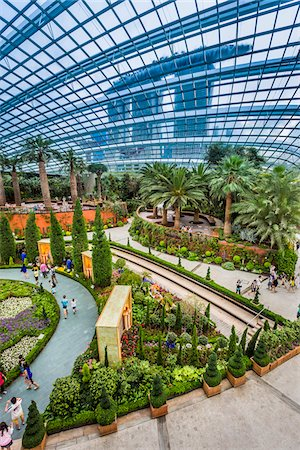 Overview of the Flower Dome, Gardens by the Bay, Singapore Stock Photo - Rights-Managed, Code: 700-07802661