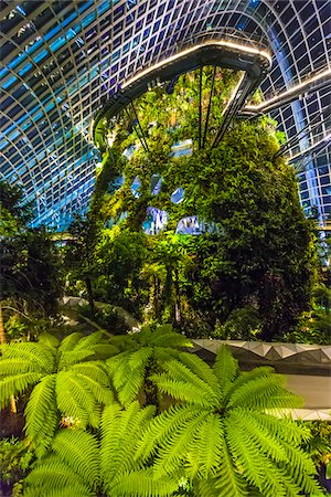 Cloud Forest conservatory, Gardens by the Bay, Singapore Stock Photo - Rights-Managed, Code: 700-07802670