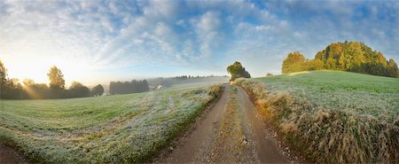 Panoramic landscape with a dirt road trail in the Bavarian Forest on an early morning in autumn, Bavarian National Forest, Bavaria, Germany Stock Photo - Rights-Managed, Code: 700-07803094