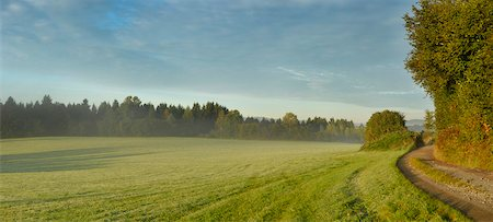 Panoramic landscape of the Bavarian Forest on an early morning in autumn, Bavarian Forest National Park, Bavaria, Germany Stock Photo - Rights-Managed, Code: 700-07803096