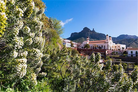 Flowering plants and white washed church (Nuestra Senora del Socorro) in the center of Tejeda with Roque Nublo in the background, Gran Canaria, Las Palmas, Canary Islands Stock Photo - Rights-Managed, Code: 700-07849641