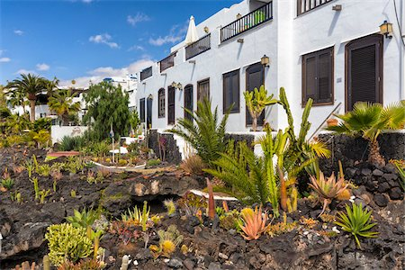 Succulent plants in front of an apartment complex, Puerto del Carmen, Lanzarote, Las Palmas, Canary Islands Stock Photo - Rights-Managed, Code: 700-07945305