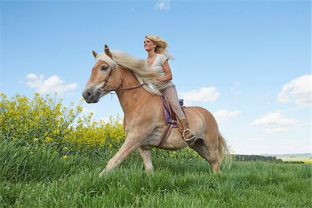 Young woman riding a Haflinger horse in a meadow in spring, Bavaria, Germany Stock Photo - Rights-Managed, Code: 700-08080578