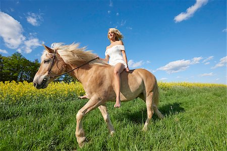 Young woman riding a Haflinger horse in a meadow in spring, Bavaria, Germany Stock Photo - Rights-Managed, Code: 700-08080585