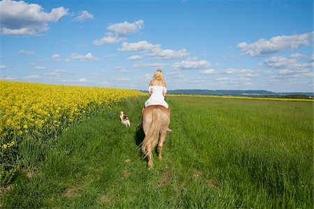 Back view of young woman riding a Haflinger horse in a meadow with Kooikerhondje dog walking beside, spring, Bavaria, Germany Stock Photo - Rights-Managed, Code: 700-08080583
