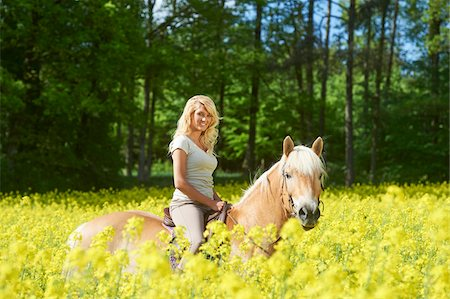 Young woman riding a Haflinger horse in a canola field in spring, Bavaria, Germany Stock Photo - Rights-Managed, Code: 700-08080594