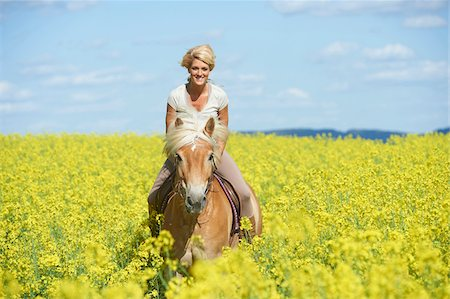 Close-up of young woman riding a Haflinger horse in a canola field in spring, Bavaria, Germany Stock Photo - Rights-Managed, Code: 700-08080596