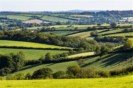 Farmland near Fowey, Cornwall, England, United Kingdom Stock Photo - Rights-Managed, Code: 700-08122229