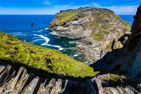Remains of Tintagel Castle, Tintagel, Cornwall, England, United Kingdom Photographie de stock - Rights-Managed, Code: 700-08122239