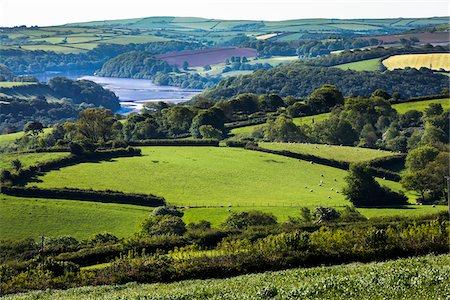 Farmland near Fowey, Cornwall, England, United Kingdom Stock Photo - Rights-Managed, Code: 700-08122231