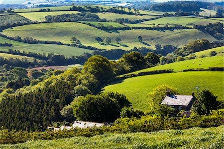 Farmland near Fowey, Cornwall, England, United Kingdom Stock Photo - Rights-Managed, Code: 700-08122233