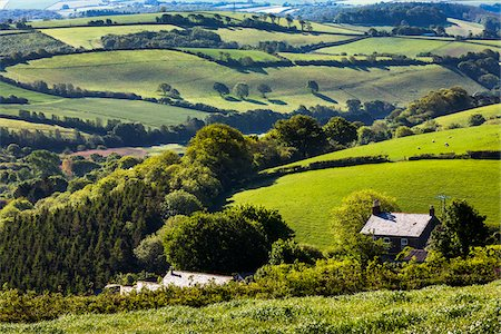 Farmland near Fowey, Cornwall, England, United Kingdom Stock Photo - Rights-Managed, Code: 700-08122233