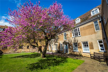 spring flowers - The courtyard of Thoresby College on Queen Street in King's Lynn, Norfolk, England, United Kingdom Stock Photo - Rights-Managed, Code: 700-08145895