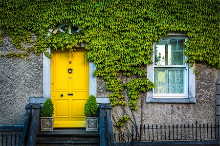 quaint house - Close-up of ivy covered house with yellow door, Kilkenny, Ireland Stock Photo - Rights-Managed, Code: 700-08146316