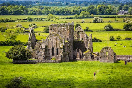 Hore Abbey, a ruined Cistercian monastery near the Rock of Cashel, Cashel, County Tipperary, Ireland Fotografie stock - Rights-Managed, Codice: 700-08146344