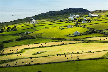 Scenic, coastal view of Caherdaniel, along the Ring of Kerry, County Kerry, Ireland Stock Photo - Rights-Managed, Code: 700-08146384