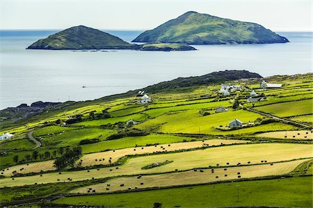 Scenic, coastal view of Caherdaniel, along the Ring of Kerry, County Kerry, Ireland Foto de stock - Con derechos protegidos, Código: 700-08146385