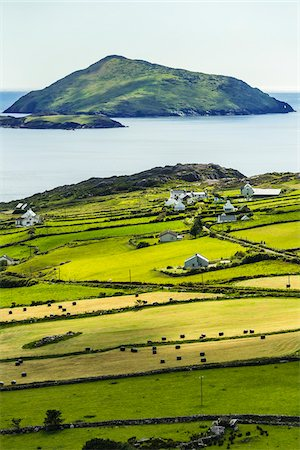Scenic, coastal view of Caherdaniel, along the Ring of Kerry, County Kerry, Ireland Foto de stock - Con derechos protegidos, Código: 700-08146386