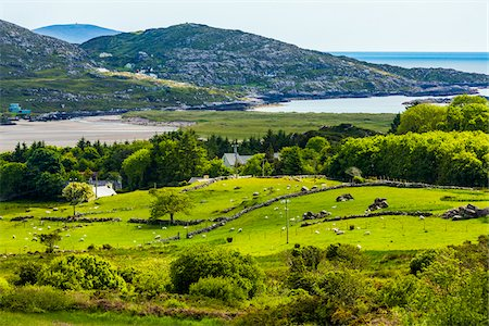 Scenic overview of Caherdaniel, along the Ring of Kerry, County Kerry, Ireland Stock Photo - Rights-Managed, Code: 700-08146380