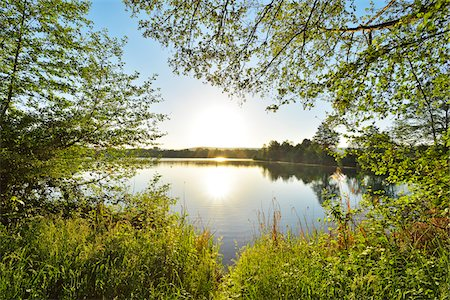 Sunrise on the shoreline on a Lake, Niedernberg, Miltenberg-District, Churfranken, Franconia, Bavaria, Germany Stock Photo - Rights-Managed, Code: 700-08225307