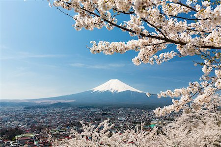 Blooming Cherry Trees over Fujiyoshida in front of Mount Fujji, Yamanashi Prefecture, Japan Stock Photo - Rights-Managed, Code: 700-08266238