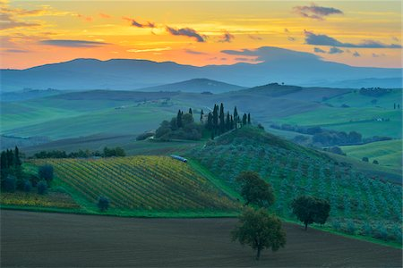Tuscany Countryside with Farmhouse at Sunrise, San Quirico d'Orcia, Val d'Orcia, Province of Siena, Tuscany, Italy Stock Photo - Rights-Managed, Code: 700-08274369