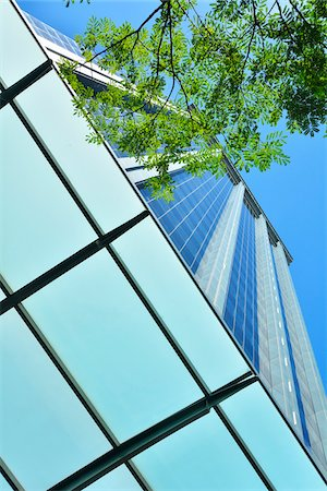 Skyscraper Facade with Tree branch, Brisbane, Queensland, Australia Stock Photo - Rights-Managed, Code: 700-08274376