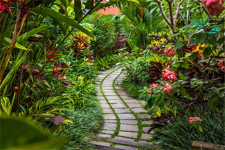 Pathway through gardens in Petulu, near Ubud, Bali, Indonesia Stock Photo - Rights-Managed, Code: 700-08385903