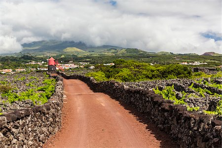 portuguese (places and things) - Rural road leading to a red windmill on wine growing fields on lava with stone walls for shelter, Pico Island, Azores, Portugal Stock Photo - Rights-Managed, Code: 700-08540060