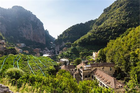 Lemon tee cultivation and farm buildings with historical papermills in the Nature Reserve Valle delle Ferriere, Amalfi Coast, Italy Stock Photo - Rights-Managed, Code: 700-08639311