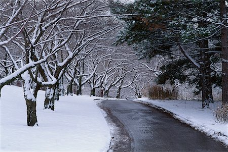High Park in Winter Toronto, Ontario, Canada Stock Photo - Rights-Managed, Code: 700-00018753