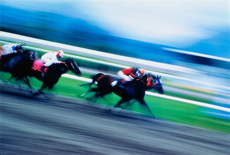Thoroughbred Horse Racing Stock Photo - Rights-Managed, Code: 700-00011094