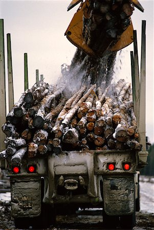 Logs on Truck Ontario, Canada Stock Photo - Rights-Managed, Code: 700-00044472
