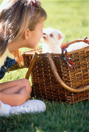 dog kissing girl - Girl with Puppy in Picnic Basket Stock Photo - Rights-Managed, Code: 700-00041488