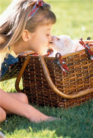 dog kissing girl - Girl with Puppy in Picnic Basket Stock Photo - Rights-Managed, Code: 700-00041489