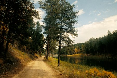 south dakota black hills national forest - Country Road Stock Photo - Rights-Managed, Code: 700-00158868