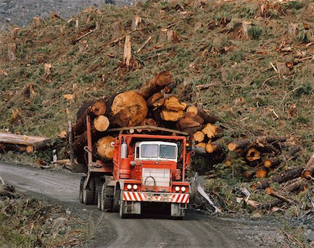 Logging Stock Photo - Rights-Managed, Code: 700-00159131