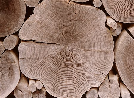Close-Up of Log Pile Stock Photo - Rights-Managed, Code: 700-00169387