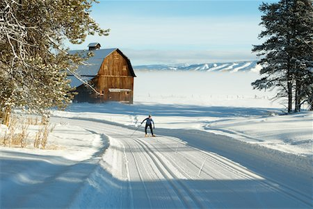 Woman Cross Country Skiing Stock Photo - Rights-Managed, Code: 700-00161281