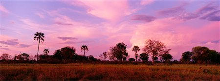 African Sunset Stock Photo - Rights-Managed, Code: 700-00162815