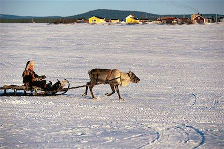 Laplander with Reindeer Lapland, Sweden Stock Photo - Rights-Managed, Code: 700-00186711